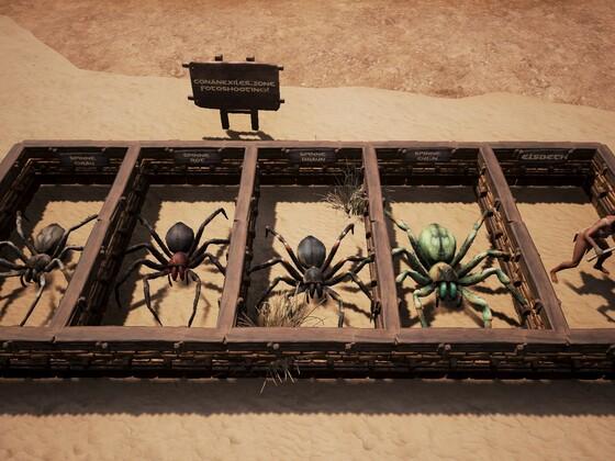 Spinnenkunde