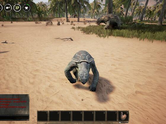 Mini Schildkröte :D